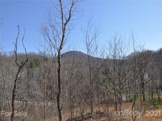 0 Terrys Gap Road, Hendersonville, NC 28792 (#3729786) :: LePage Johnson Realty Group, LLC