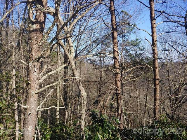 228 Bearwallow Trail #35, Leicester, NC 28748 (#3729846) :: TeamHeidi®