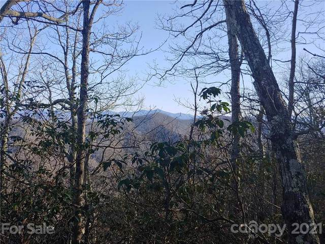 215 Bearwallow Trail #25, Leicester, NC 28748 (#3729887) :: TeamHeidi®