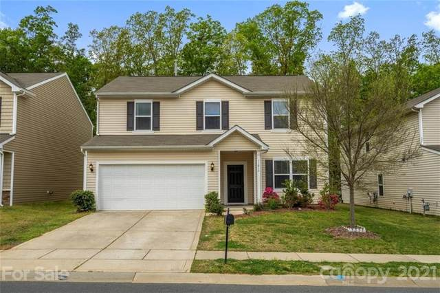 11817 Downy Birch Road, Charlotte, NC 28227 (#3729989) :: Ann Rudd Group
