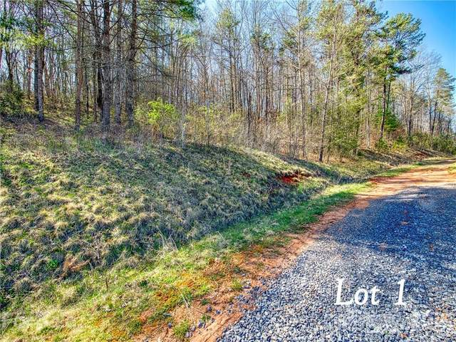 Lot 1 Leatherwood Road, Waynesville, NC 28785 (#3730016) :: Ann Rudd Group