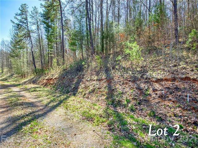 Lot 2 Leatherwood Road, Waynesville, NC 28785 (#3730020) :: The Snipes Team | Keller Williams Fort Mill