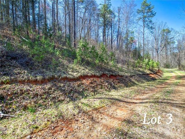 Lot 3 Leatherwood Road, Waynesville, NC 28785 (#3730030) :: Ann Rudd Group