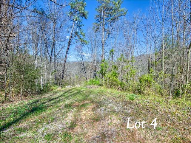 Lot 4 Leatherwood Road, Waynesville, NC 28785 (#3730040) :: Ann Rudd Group