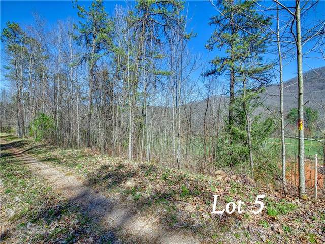Lot 5 Leatherwood Road, Waynesville, NC 28785 (#3730046) :: Carlyle Properties