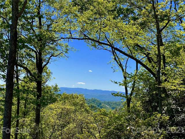 Lot e7 Marble Heights Trail, Hendersonville, NC 28791 (#3730213) :: Rowena Patton's All-Star Powerhouse