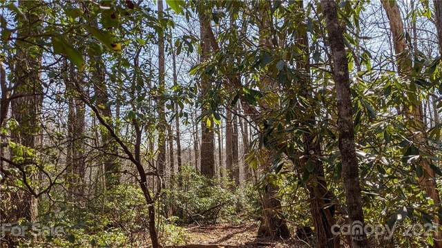13.3 Acres on Forest Brook Drive, Black Mountain, NC 28711 (#3730806) :: Modern Mountain Real Estate