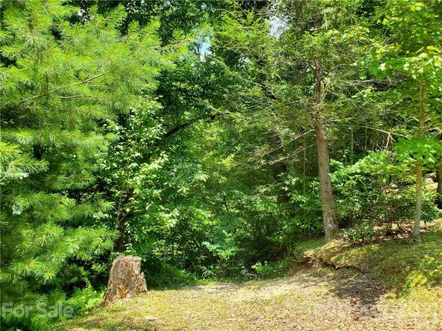 263 Long Ridge Road, Brevard, NC 28712 (#3730890) :: LePage Johnson Realty Group, LLC