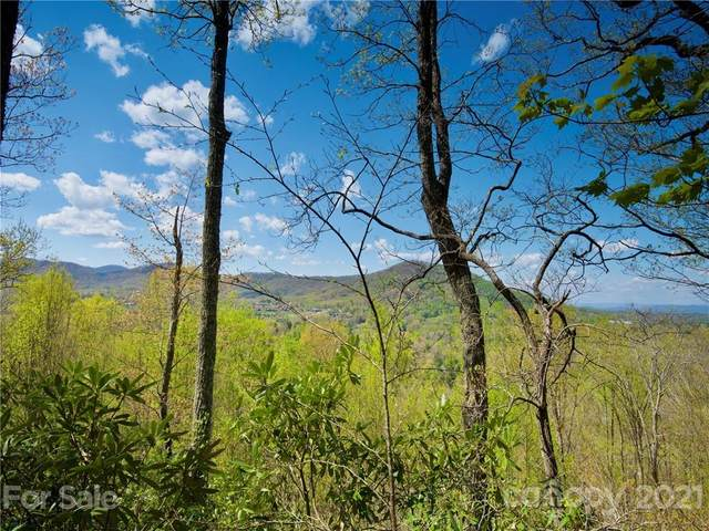 222 Secluded Hills Lane #40, Arden, NC 28704 (#3731064) :: The Ordan Reider Group at Allen Tate