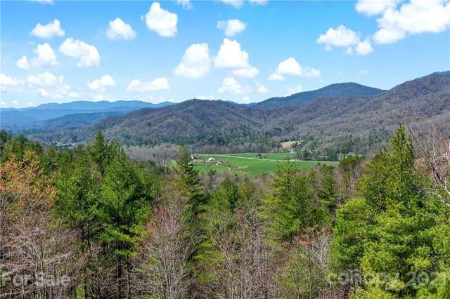 Lot 58 Sir Duke Drive, Marion, NC 28752 (#3731106) :: The Allen Team