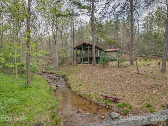 1873 E Deep Gap Farm Road, Mill Spring, NC 28756 (#3731162) :: LePage Johnson Realty Group, LLC