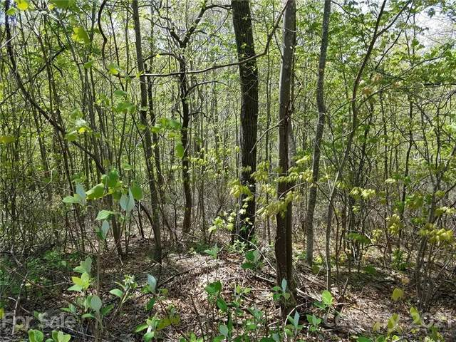 0000 Melrose Mountain Drive #519, Tryon, NC 28782 (#3731195) :: Carlyle Properties