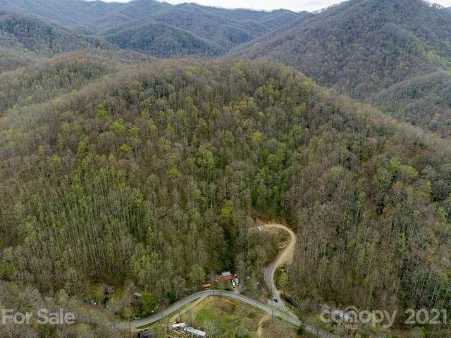0 Conleys Creek Road, Whittier, NC 28779 (#3731270) :: LePage Johnson Realty Group, LLC