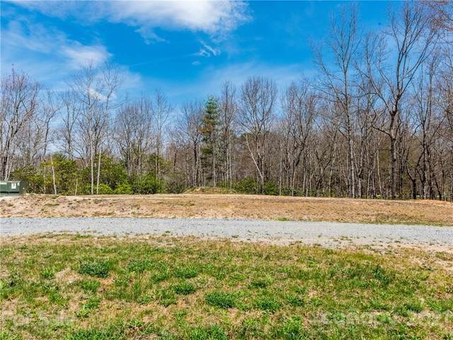 TBD Caitlin Raney Way L10r, Brevard, NC 28712 (#3731353) :: Carlyle Properties