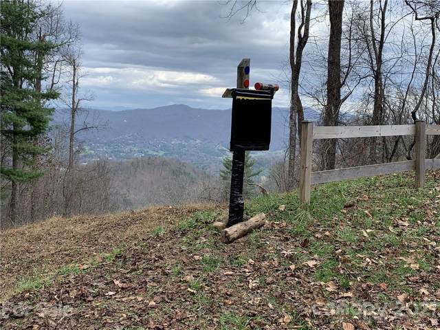 0 Elk Mountain Scenic Highway, Asheville, NC 28804 (#3731523) :: Homes Charlotte