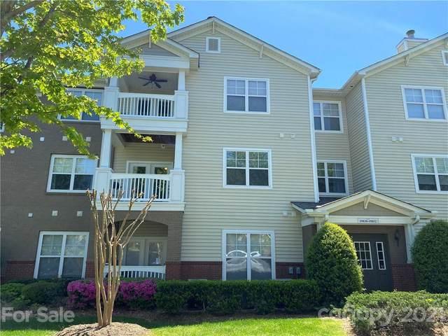 19839 Deer Valley Drive, Cornelius, NC 28031 (#3732018) :: Cloninger Properties