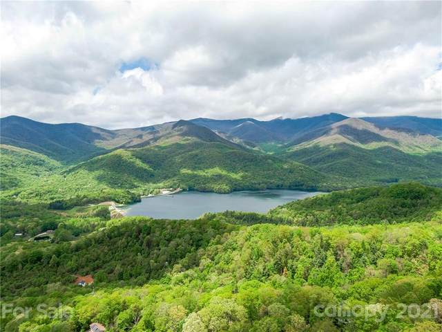 99999 Walker Mountain Lane, Black Mountain, NC 28711 (#3732554) :: TeamHeidi®