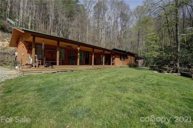460 Hunting Boy Branch Road, Robbinsville, NC 28771 (#3732591) :: Exit Realty Vistas