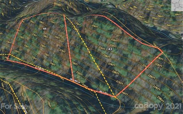 9999 Wild Iris Lane 43, 44, Marshall, NC 28753 (#3732615) :: Premier Realty NC