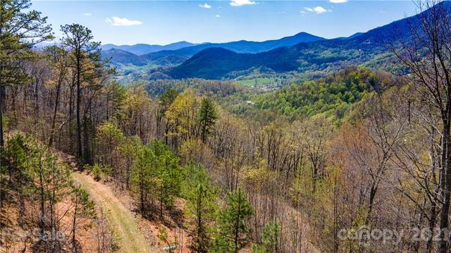 TBD Wolverine Court #53, Waynesville, NC 28785 (#3732790) :: Rowena Patton's All-Star Powerhouse