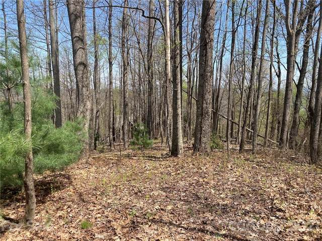 656 Blue Mist Way #202, Arden, NC 28704 (#3733665) :: Cloninger Properties