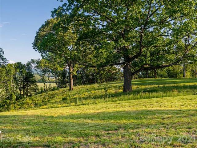 Lot 34 Pisgah Ridge Trail #34, Mills River, NC 28759 (#3733670) :: Keller Williams Professionals