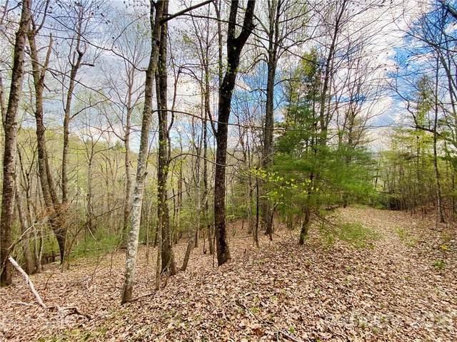 1419 Rambling Oaks Trail, Hendersonville, NC 28739 (#3734355) :: The Sarver Group