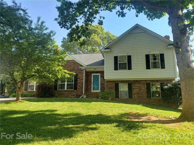 356 Reed Creek Road, Mooresville, NC 28117 (#3735091) :: Stephen Cooley Real Estate Group