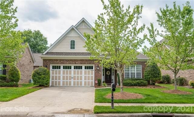 10931 Round Rock Road, Charlotte, NC 28277 (#3735110) :: Scarlett Property Group