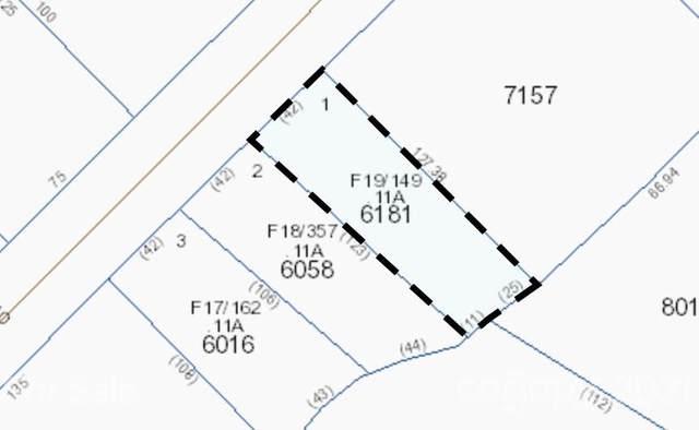 165 Duckworth Avenue SW Lot 1, Brevard, NC 28712 (#3735689) :: The Sarver Group