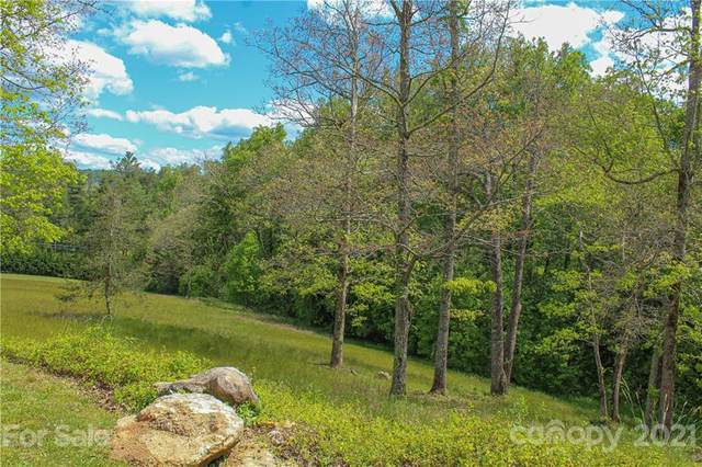 225 A Virea Drive #5, Hendersonville, NC 28739 (#3735879) :: Mossy Oak Properties Land and Luxury