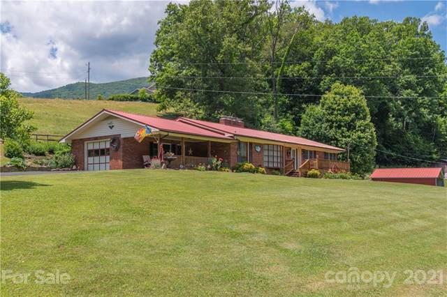 282 Orion Davis Road, Waynesville, NC 28786 (MLS #3736000) :: RE/MAX Journey