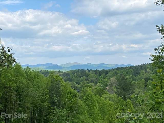 97 Yale Road, Hendersonville, NC 28739 (#3736240) :: The Allen Team