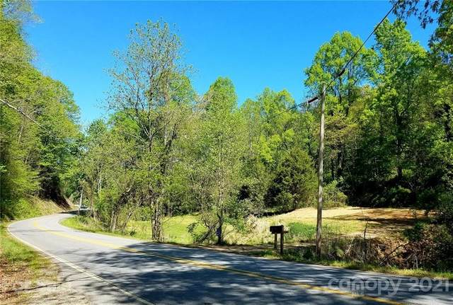 234 Hookers Gap Road, Leicester, NC 28748 (#3736547) :: Carlyle Properties
