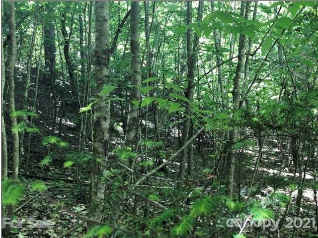 LOT 57 Clear Spring Trail #57, Nebo, NC 28761 (#3736671) :: The Allen Team