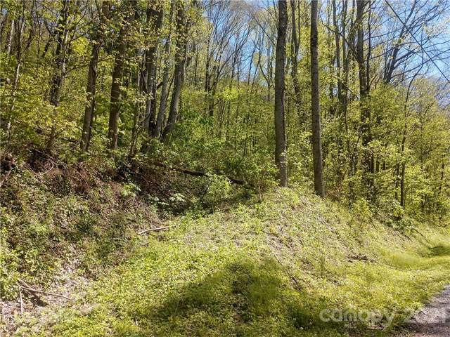 00 Old Country Road #326, Waynesville, NC 28786 (#3736698) :: Besecker Homes Team