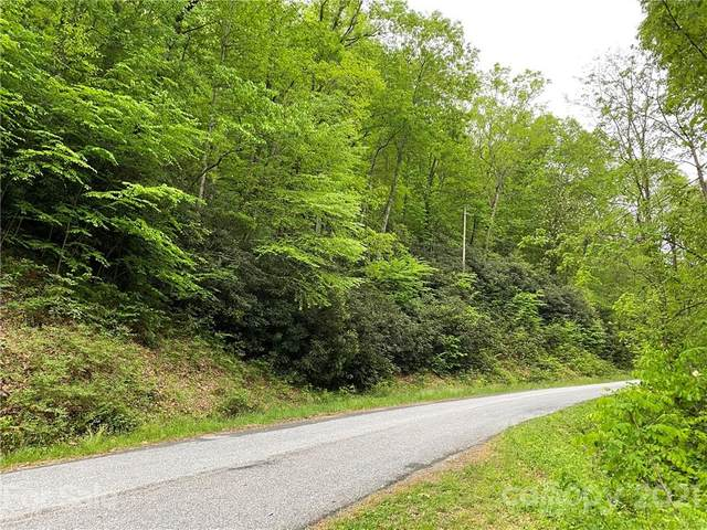 000 Holiday Drive, Hendersonville, NC 28739 (#3737110) :: Homes with Keeley | RE/MAX Executive