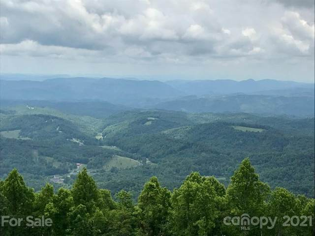 6 Evergreen Drive, Black Mountain, NC 28711 (#3737134) :: SearchCharlotte.com