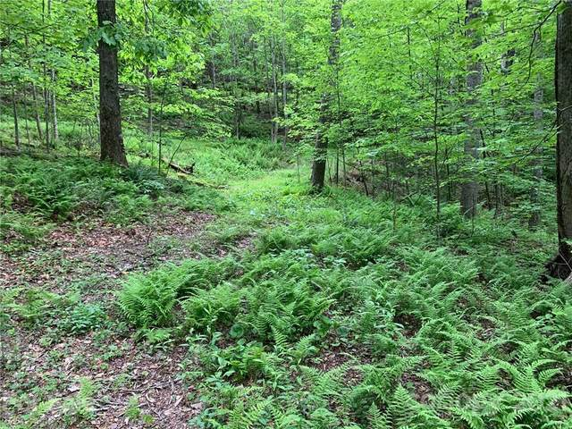 221 Soapstone Creek Drive, Arden, NC 28704 (#3737203) :: NC Mountain Brokers, LLC