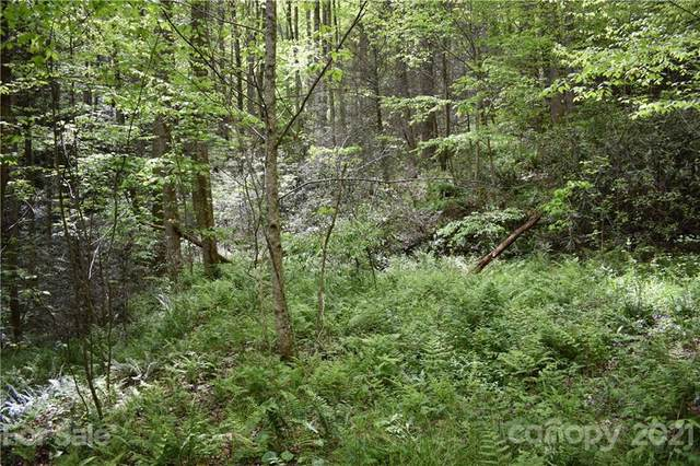 Land Off Shelton Laurel Road, Clyde, NC 28721 (#3737472) :: Lake Wylie Realty