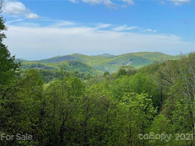 OFF Pine Mountain Drive, Brevard, NC 28712 (#3737520) :: Mossy Oak Properties Land and Luxury