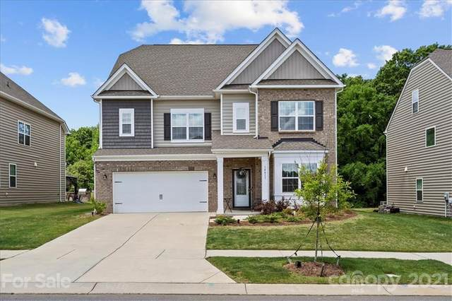 14411 Rhodes Hall Drive, Charlotte, NC 28273 (#3737550) :: Stephen Cooley Real Estate Group