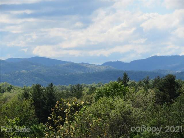 428 Dvdisdi Court, Brevard, NC 28712 (#3737805) :: Mossy Oak Properties Land and Luxury