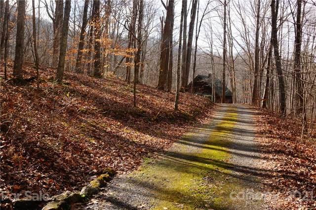 465 Ox Creek Road, Weaverville, NC 28787 (#3737852) :: Rowena Patton's All-Star Powerhouse