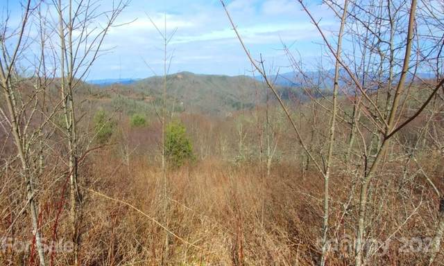 382 Adcock Mountain Road 6B, Waynesville, NC 28785 (MLS #3737902) :: RE/MAX Journey
