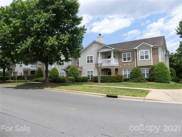 16811 Doe Valley Court, Cornelius, NC 28031 (#3738025) :: Cloninger Properties
