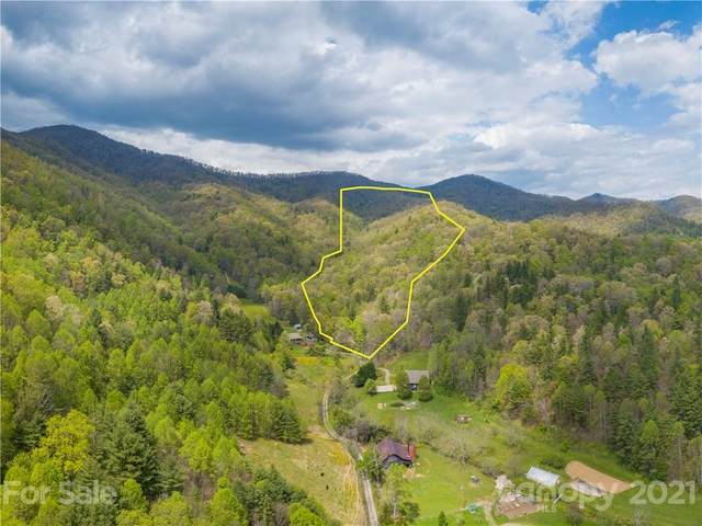 99999 Burnette Reeves Road, Leicester, NC 28748 (#3738271) :: Mossy Oak Properties Land and Luxury