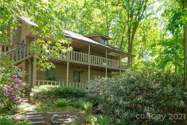 60 Appalachian Village Road, Asheville, NC 28804 (#3738363) :: Keller Williams Professionals