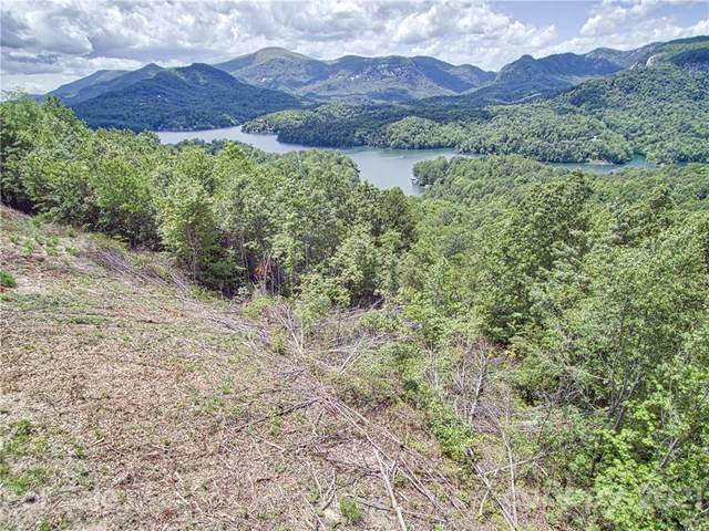 151 & 169 Overlook Point Lane, Lake Lure, NC 28746 (#3738554) :: DK Professionals