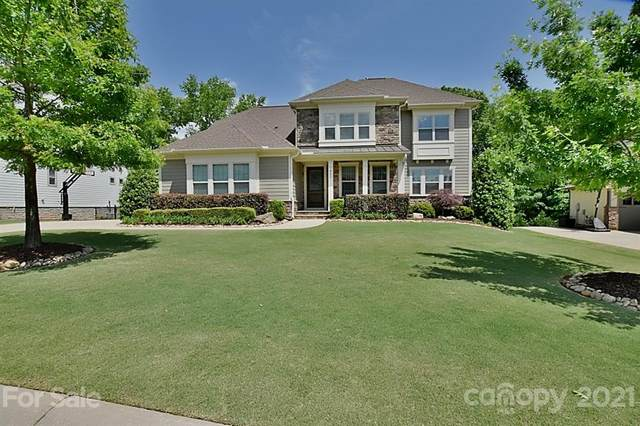922 Castlewatch Drive, Fort Mill, SC 29708 (#3738828) :: Ann Rudd Group